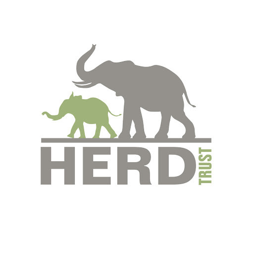 HERD Elephant Orphanage South Africa