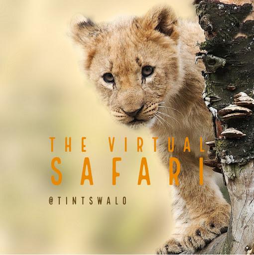 The Virtual Safari