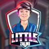 Little Zalmi
