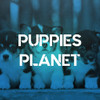 Puppies Planet
