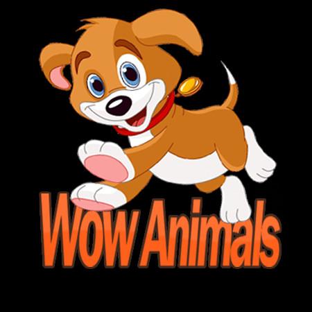 Wow Animals