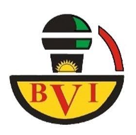 BVI Channel 1